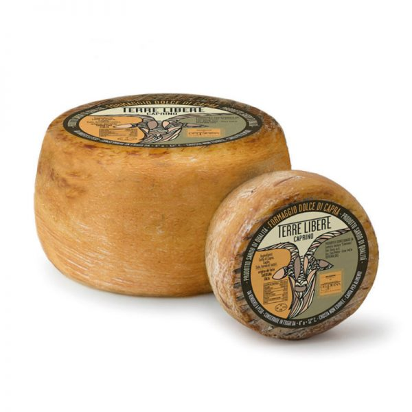 Formaggio dolce di capra della Sardegna - Terre Libere - Selezione Delphina